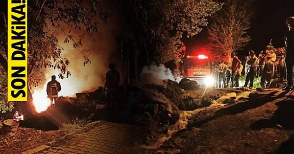 Van'da korkutan ot yangını