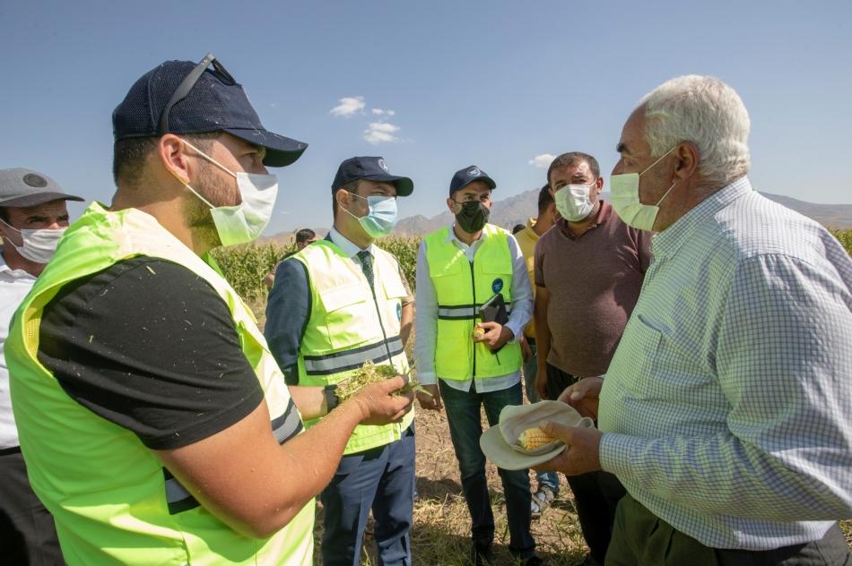 Biz de ziraatçı arkadaşlarımızla birlikte Kıratlı mahallemizdeki silajlık mısır hasadını yerinde görmek istedik. Burada çiftçimiz 12 dönümlük alanda ekim yapmış, onun hasadını yapacak. Çiftçilerimize toplamda bin dönümlük silajlık mısır ekim desteği ile ekipman desteği verdik.