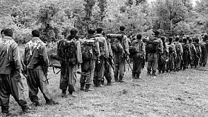 PKK'nın Dağ Kadrosu Geriliyor