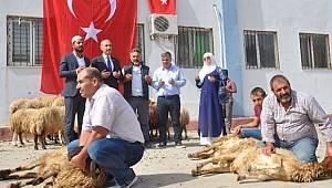 Mehmetçik ve vatan için sınırda 50 kurban kesildi
