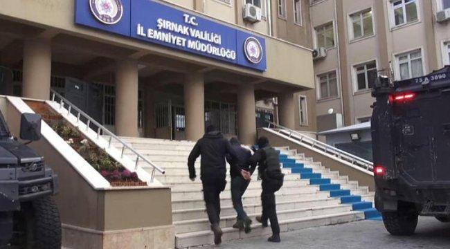 Şırnak'ta terör örgütü operasyonu: 14 gözaltı