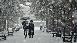 Van'da kar yağışı çevreyi beyaza bürüdü
