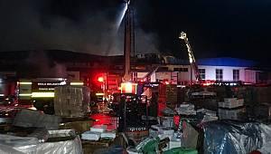 Düzce'de fabrikada yangın (3)