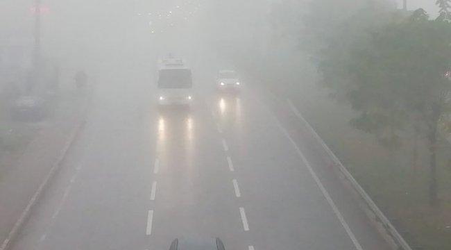 Kocaeli'de yoğun sis deniz ulaşımın durdurdu