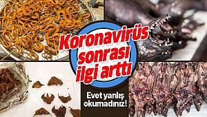 Korona virüs sonrası yarasa ve fare pazarına ilgi arttı