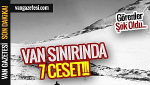 Son Dakika: VAN SINIRINDA 7 CESET !!!