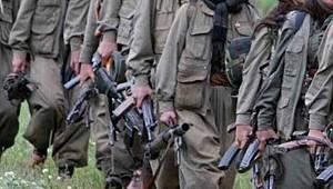 Van'da Operasyon : İki Terörist Yakalandı