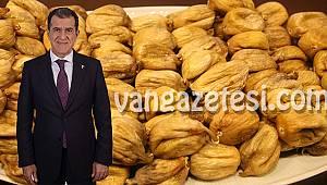 Kuru incir ihracatı 57 bin tonu aştı