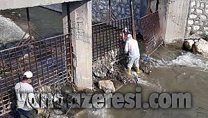 Van 'da Sıkı Bahar Temizliği Başladı