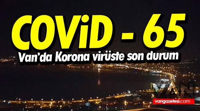 Covid - 65 - Van'da Korona virüste son durum