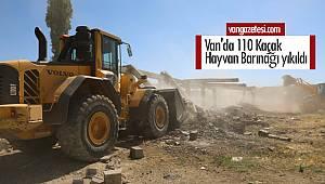 Van'da 110 Kaçak Hayvan Barınağı yıkıldı