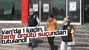 Van'da 1 kadın, terör örgütü suçundan tutulandı - İşte o detay