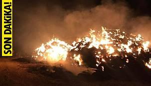 6 bin balya saman alev alev yandı