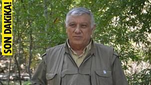 Şamil Tayyar'dan flaş açıklama! PKK'nın elebaşı Cemil Bayık öldürüldü mü?