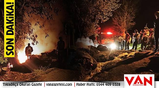 Van'da hayvanlar telef olmaktan zor kurtuldu - Ot yangını
