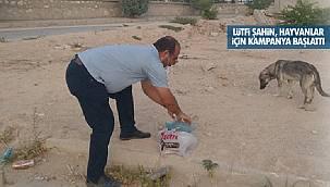 Lütfi Şahin, Her akşam aç kalan hayvanlara döner atıklarını dağıtıyor