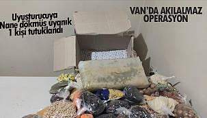 Van'da akıl almaz operasyon! Uyuşturucuya Nane dökmüş uyanık - 1 kişi tutuklandı