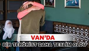 Van'da Bir Terörist Daha Teslim Oldu
