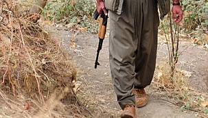 Van'da PKK'yla İlgili Gelişme