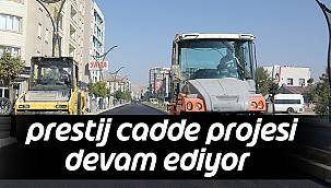 'Prestij Cadde Projesi' Devam Ediyor