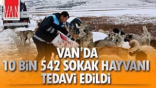 Van'da 10 Bin 542 Sokak Hayvanı Tedavi Edildi