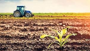 Van'da Tarım Alanları Genişletiliyor