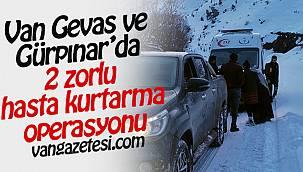 Van Gevaş ve Gürpınar'da 2 zorlu hasta kurtarma operasyonu