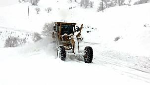 Van'da kar yağışı etkisini göstermeye başladı