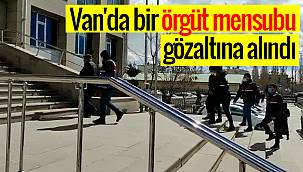 Van'da bir örgüt mensubu gözaltına alındı