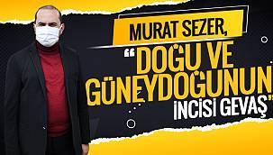 Murat Sezer, 'Doğu ve Güneydoğunun İncisi GEVAŞ'