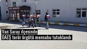 Van Saray ilçesinde DAEŞ terör örgütü mensubu tutuklandı