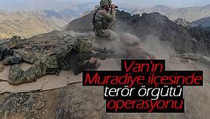 Van'ın Muradiye ilçesinde terör örgütü operasyonu - 1 tutuklama