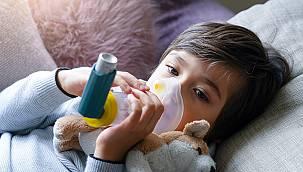 Vanlı çocukların sağlığı, soludukları havanın kalitesine bağlı