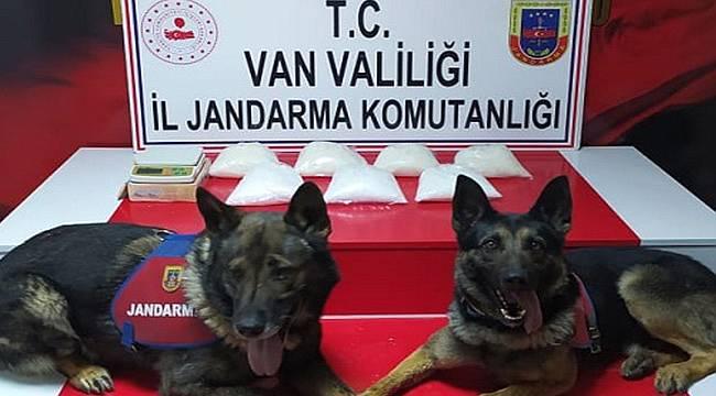 Dedektör Köpekler Aşil ve Barut iş başında