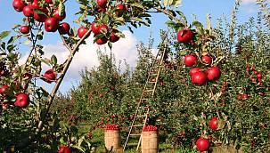 Tarım ve Orman Bakanlığı'ndan Van'lı Çiftçiye Büyük Destek