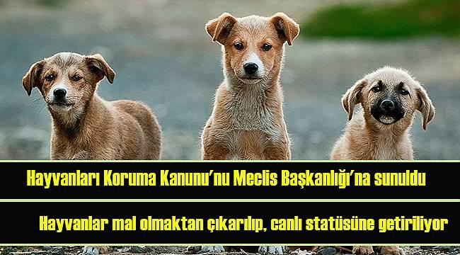 Hayvanları Koruma Kanunu'nu Meclis Başkanlığı'na sunuldu