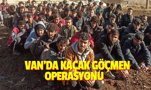 Van'da kaçak göçmen operasyonu