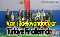 Taekwondo Cular Türkiye Finallerinde