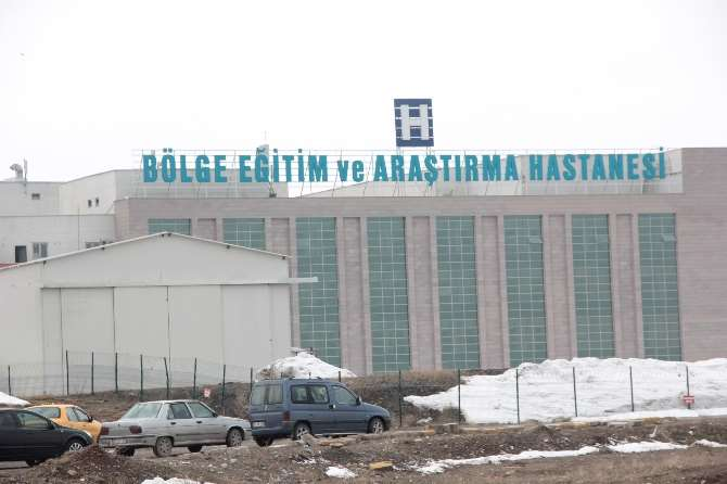 Bir Domuz Gribi Şüphesi De Erzurum'dan
