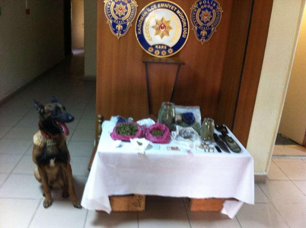 Uyuşturucu Satıcılarının Planını Dedektör Köpek Bozdu