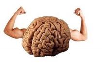 Beynimiz vücudumuzun temel yapı taşı