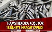 HAMSİ REKORA KOŞUYOR